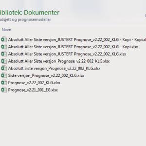 Liste med ulike versjoner av Excel dokumenter