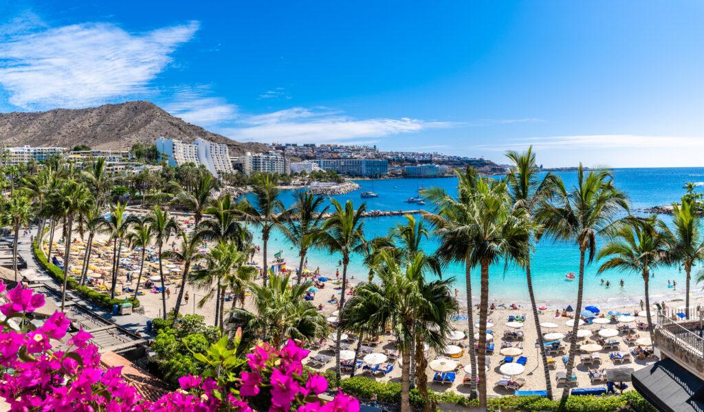 Beach, palms, sun at the Canary Islands.