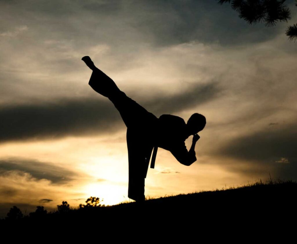 woman-in-silhouette-practicing-martial-arts-karate-sunset-outdoors